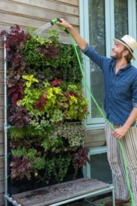 A small outdoor space? Try vertical gardening